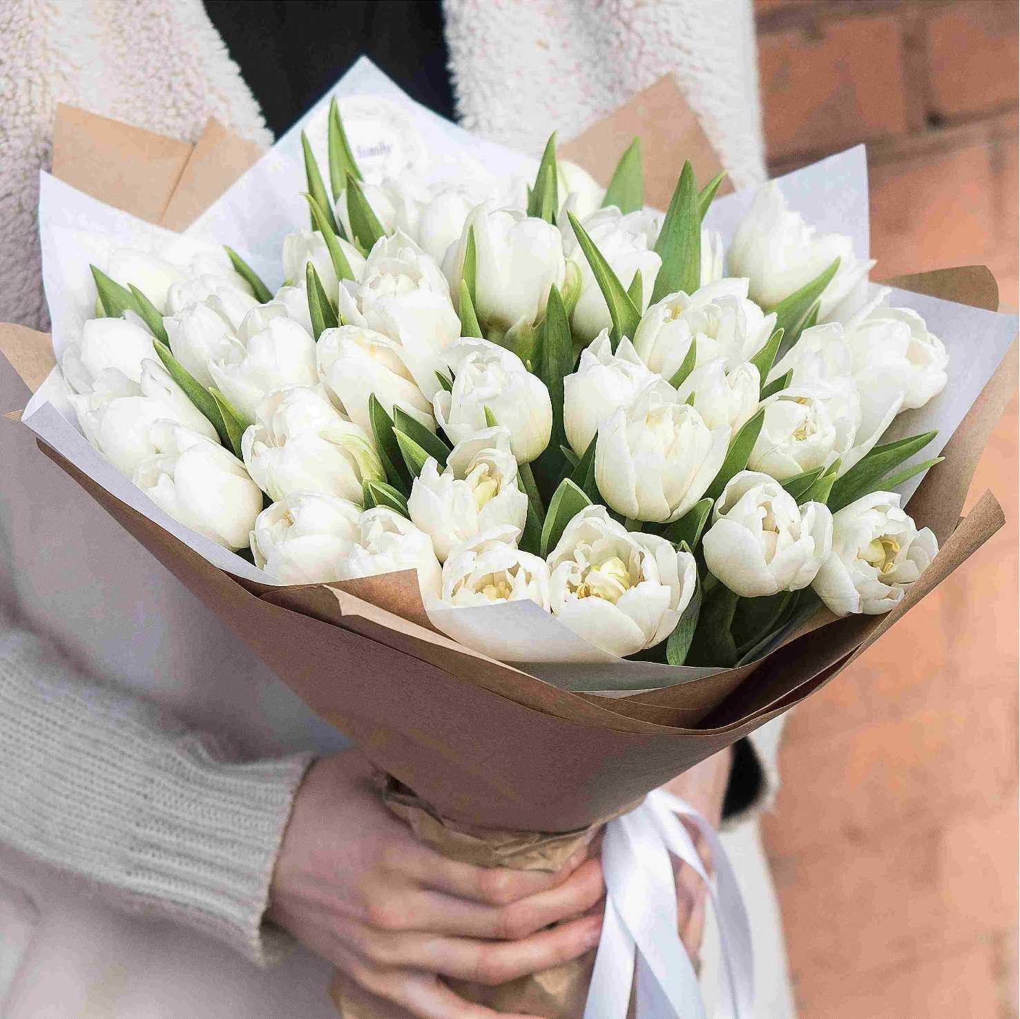 Фото с белыми тюльпанами