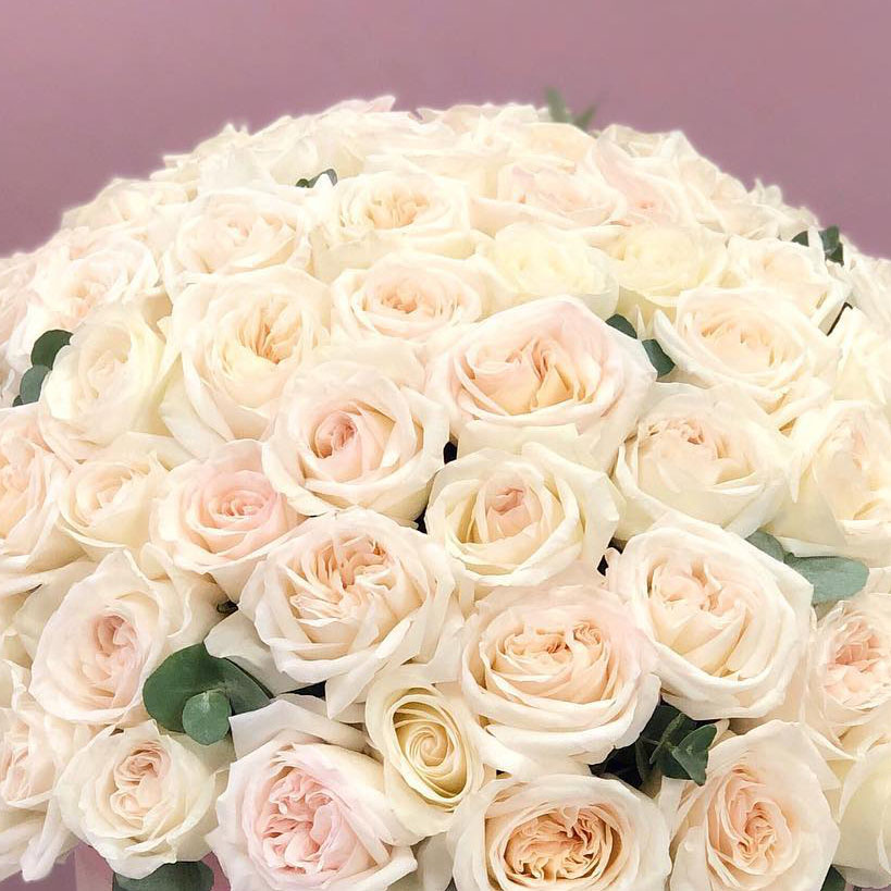 Ароматные розы Вайт Охара в коробке King Size №0893