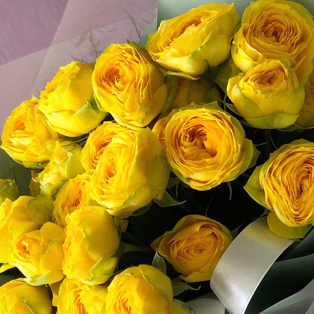 Пионовидные розы Голден Трендсеттер №0897