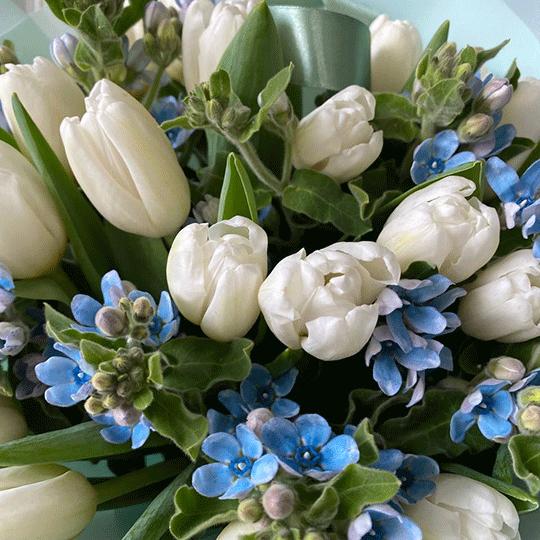 Дуобукет тюльпаны+оксипеталум №0537