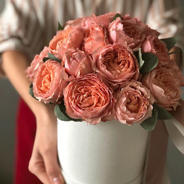 Розы Джульетта в коробке S №0819