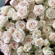 Кустовые розы Елена №0902