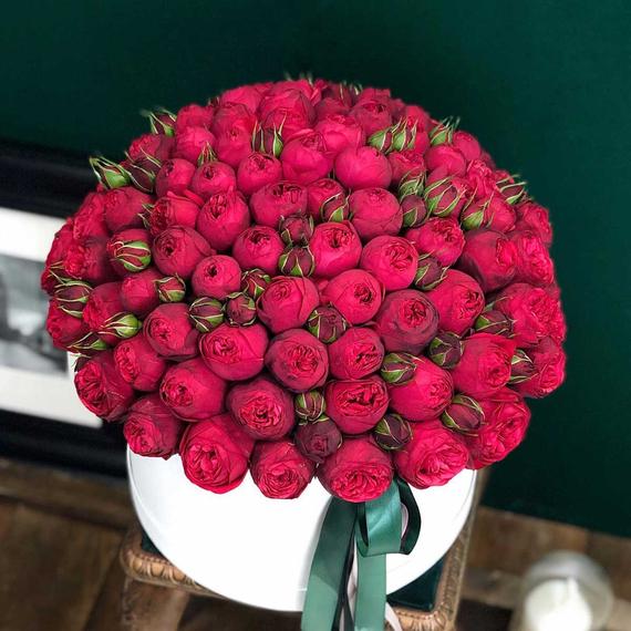 101 роза Ред Пиано в коробке XL №0889