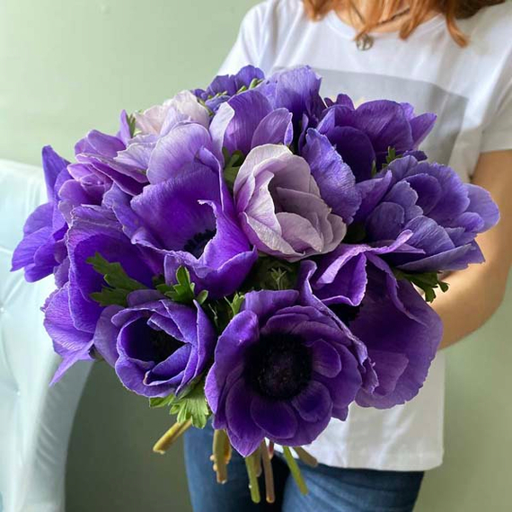 Анемоны фиолетовые №0251