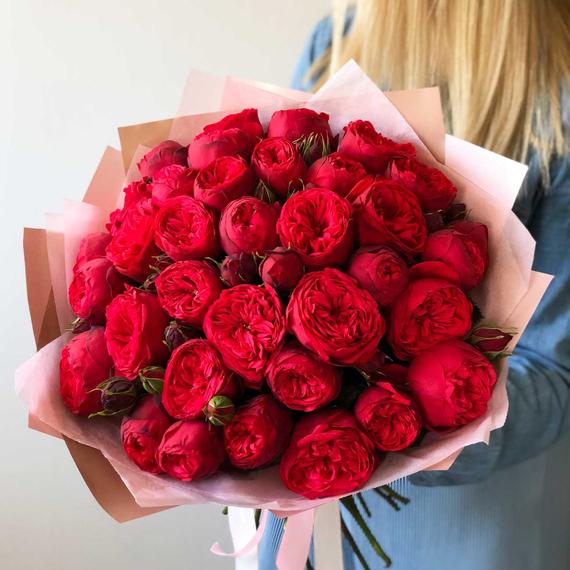 Пионовидные кустовые розы Ред Пиано №0971